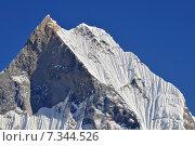 "Купить «Nepal, Annapurna Conservation Area, Machapuchare or Machhapuchhre ^""Fish Tail^"", mountain in the Annapurna Himal of north central Nepal, view from Annapurna Base Camp», фото № 7344526, снято 20 июля 2019 г. (c) BE&W Photo / Фотобанк Лори"
