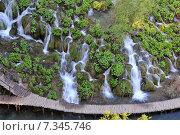 Купить «Croatia, Plitvicka Jezera, Plitvice Lakes National Park, Plitvice Lakes National Park», фото № 7345746, снято 19 августа 2019 г. (c) BE&W Photo / Фотобанк Лори