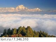 Купить «Nepal, Ghorepani, Poon Hill, Dhaulagiri massif, Himalaya, Dhaulagiri range looking west from Poon Hill», фото № 7346310, снято 20 июля 2019 г. (c) BE&W Photo / Фотобанк Лори