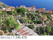 Купить «Exotic cacti garden at the very top of the mediaeval hilltop village of Eze, France.», фото № 7346478, снято 23 мая 2019 г. (c) BE&W Photo / Фотобанк Лори