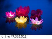 Купить «Водный фонарик, праздник», эксклюзивное фото № 7363522, снято 15 августа 2018 г. (c) Екатерина Тимонова / Фотобанк Лори