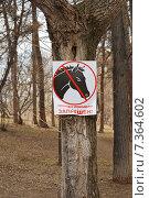 """Знак """"Проход с лошадьми запрещен"""" на дереве. Стоковое фото, фотограф Евгений Кузнецов / Фотобанк Лори"""