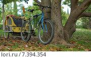 Припаркованный велосипед-коляска у дерева (2013 год). Редакционное фото, фотограф Ольга Акшонина / Фотобанк Лори