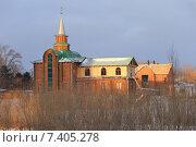 Мечеть за ивами (2014 год). Стоковое фото, фотограф Анатолий Матвейчук / Фотобанк Лори