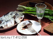 Сельдь с водкой и зеленый лук на ржаном хлебе. Стоковое фото, фотограф Марина Володько / Фотобанк Лори