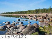Купить «Майский вечер на камнях Финского залива», фото № 7412310, снято 10 мая 2015 г. (c) Виктор Карасев / Фотобанк Лори