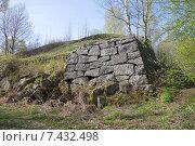 Купить «Обрушенная стена одного из бастионов крепости Высоцк», фото № 7432498, снято 10 мая 2015 г. (c) Виктор Карасев / Фотобанк Лори