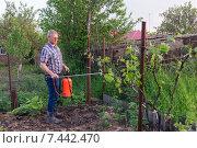 Купить «Мужчина средних лет работает на приусадебном участке», фото № 7442470, снято 12 мая 2015 г. (c) Ольга Алексеенко / Фотобанк Лори