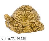 Денежная черепаха фэн шуй на белом фоне. Стоковое фото, фотограф Валерий Кондрашов / Фотобанк Лори