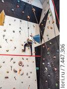 Купить «Девочка занимается альпинизмом на скалодроме», фото № 7447306, снято 23 февраля 2015 г. (c) Кекяляйнен Андрей / Фотобанк Лори