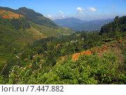 Купить «Горный пейзаж. Шри Ланка», фото № 7447882, снято 17 марта 2015 г. (c) Михаил Коханчиков / Фотобанк Лори