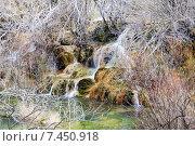 Купить «Mountains stream through moss stones», фото № 7450918, снято 9 декабря 2014 г. (c) Яков Филимонов / Фотобанк Лори