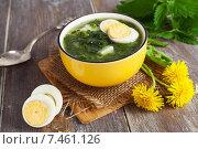 Купить «Суп из крапивы с яйцом в миске», фото № 7461126, снято 21 мая 2015 г. (c) Надежда Мишкова / Фотобанк Лори
