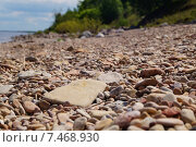Купить «Галечный берег», фото № 7468930, снято 23 мая 2015 г. (c) Константин Кург / Фотобанк Лори