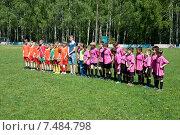 Купить «Приветствие команд», фото № 7484798, снято 23 мая 2015 г. (c) Владимир Пресняков / Фотобанк Лори