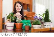 woman working with flowers in pots. Стоковое фото, фотограф Яков Филимонов / Фотобанк Лори