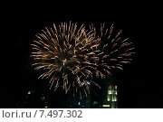 Купить «beautiful fireworks at night city sky», фото № 7497302, снято 18 февраля 2015 г. (c) Syda Productions / Фотобанк Лори