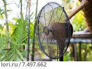 Купить «close up of fan outdoors», фото № 7497662, снято 15 февраля 2015 г. (c) Syda Productions / Фотобанк Лори