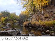 Купить «Река Никишиха. Забайкальский край», эксклюзивное фото № 7501662, снято 26 сентября 2007 г. (c) Александр Щепин / Фотобанк Лори