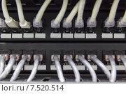 Купить «Большая группа белых UTP кабелей», фото № 7520514, снято 16 января 2019 г. (c) Mikhail Starodubov / Фотобанк Лори