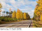 Купить «Асфальтированное шоссе в живописном осеннем лесу», фото № 7527970, снято 6 октября 2013 г. (c) Юлия Бабкина / Фотобанк Лори