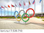 Купить «Сочи. Олимпийские кольца на Олимпийской площади», фото № 7539710, снято 27 апреля 2015 г. (c) Parmenov Pavel / Фотобанк Лори