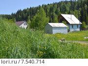 Купить «Деревня на фоне леса», фото № 7540714, снято 8 июня 2015 г. (c) Ольга Логачева / Фотобанк Лори