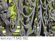 Кованая декоративная решетка (2013 год). Стоковое фото, фотограф Елена Ижболдина / Фотобанк Лори