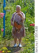 Купить «Старенькая бабушка держит в руках проросшую чудо-картошку. Надо не забывать посадить картошку вовремя! :)», эксклюзивное фото № 7551630, снято 9 июля 2014 г. (c) Истомина Елена / Фотобанк Лори