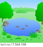 Озеро с утками, иллюстрация. Стоковая иллюстрация, иллюстратор Bellastera / Фотобанк Лори