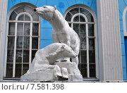 Купить «Белые медведи. Мурманск.», фото № 7581398, снято 18 июня 2015 г. (c) Ирина Здаронок / Фотобанк Лори