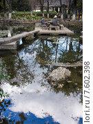 Купить «Красивый китайский сад с прудом», фото № 7602398, снято 1 ноября 2014 г. (c) Василий Кочетков / Фотобанк Лори
