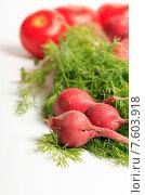 Купить «Свежие овощи, редиска, укроп и томаты на белом фоне», эксклюзивное фото № 7603918, снято 22 июня 2015 г. (c) Яна Королёва / Фотобанк Лори