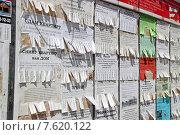Купить «Доска объявлений с отрывными листочками», эксклюзивное фото № 7620122, снято 18 июня 2015 г. (c) Сергей Соболев / Фотобанк Лори