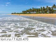 Купить «Пальмы на берегу Индийского океана. Шри-Ланка, Нилавели. Знаменитый пляж на северо-восточном побережье острова», фото № 7620470, снято 14 июня 2015 г. (c) Владимир Сергеев / Фотобанк Лори