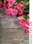 Купить «Букет красивых розовых роз на деревянном фоне», фото № 7631318, снято 29 января 2015 г. (c) Елена Блохина / Фотобанк Лори