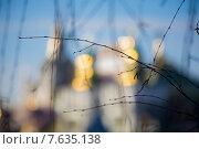 Веточка березы на закате весеннего дня на фоне Измайловского кремля в Измайлово (2015 год). Редакционное фото, фотограф Антонина Морозова / Фотобанк Лори