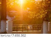 Купить «Летний золотой закат в городе», фото № 7650302, снято 14 мая 2014 г. (c) Илья Бесхлебный / Фотобанк Лори