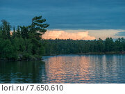 Купить «Trees at the lakeside at dusk, Lake of The Woods, Ontario, Canada», фото № 7650610, снято 18 июля 2013 г. (c) Ingram Publishing / Фотобанк Лори