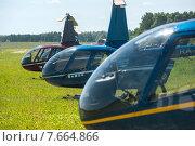 Купить «Вертолеты Robinson стоят в ряд на поле подмосковного аэродрома Шевлино», фото № 7664866, снято 13 июня 2015 г. (c) Сайганов Александр / Фотобанк Лори