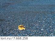 Одинокие ботинки на черном пляже. Стоковое фото, фотограф Евгения Теленная / Фотобанк Лори