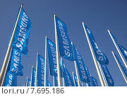 Купить «Berlin, Germany, flags by Samsung at IFA 2013», фото № 7695186, снято 2 сентября 2013 г. (c) Caro Photoagency / Фотобанк Лори