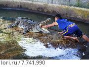 Рука дрессировщика в пасти крокодила (2014 год). Редакционное фото, фотограф Andrei Leventcov / Фотобанк Лори