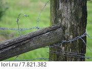 Купить «meadow post wire wrapped entangled», фото № 7821382, снято 23 марта 2019 г. (c) PantherMedia / Фотобанк Лори