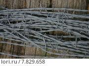 Купить «post wire fence enclosure prickle», фото № 7829658, снято 23 марта 2019 г. (c) PantherMedia / Фотобанк Лори