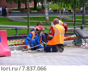 Купить «Бригада рабочих укладывают плитку в Александровском саду в Москве», эксклюзивное фото № 7837066, снято 25 июня 2014 г. (c) lana1501 / Фотобанк Лори