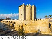 Calahorra Tower ana Roman bridge in Cordoba (2014 год). Стоковое фото, фотограф Яков Филимонов / Фотобанк Лори