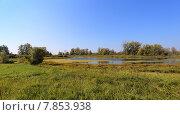 Купить «Озеро в тине», эксклюзивное фото № 7853938, снято 13 сентября 2014 г. (c) Анатолий Матвейчук / Фотобанк Лори
