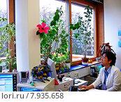 Купить «looking view work office job», фото № 7935658, снято 18 октября 2018 г. (c) PantherMedia / Фотобанк Лори
