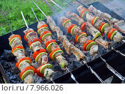 Шашлык из свинины с дольками помидора и кабачка жарится на мангале. Стоковое фото, фотограф Александр Замараев / Фотобанк Лори